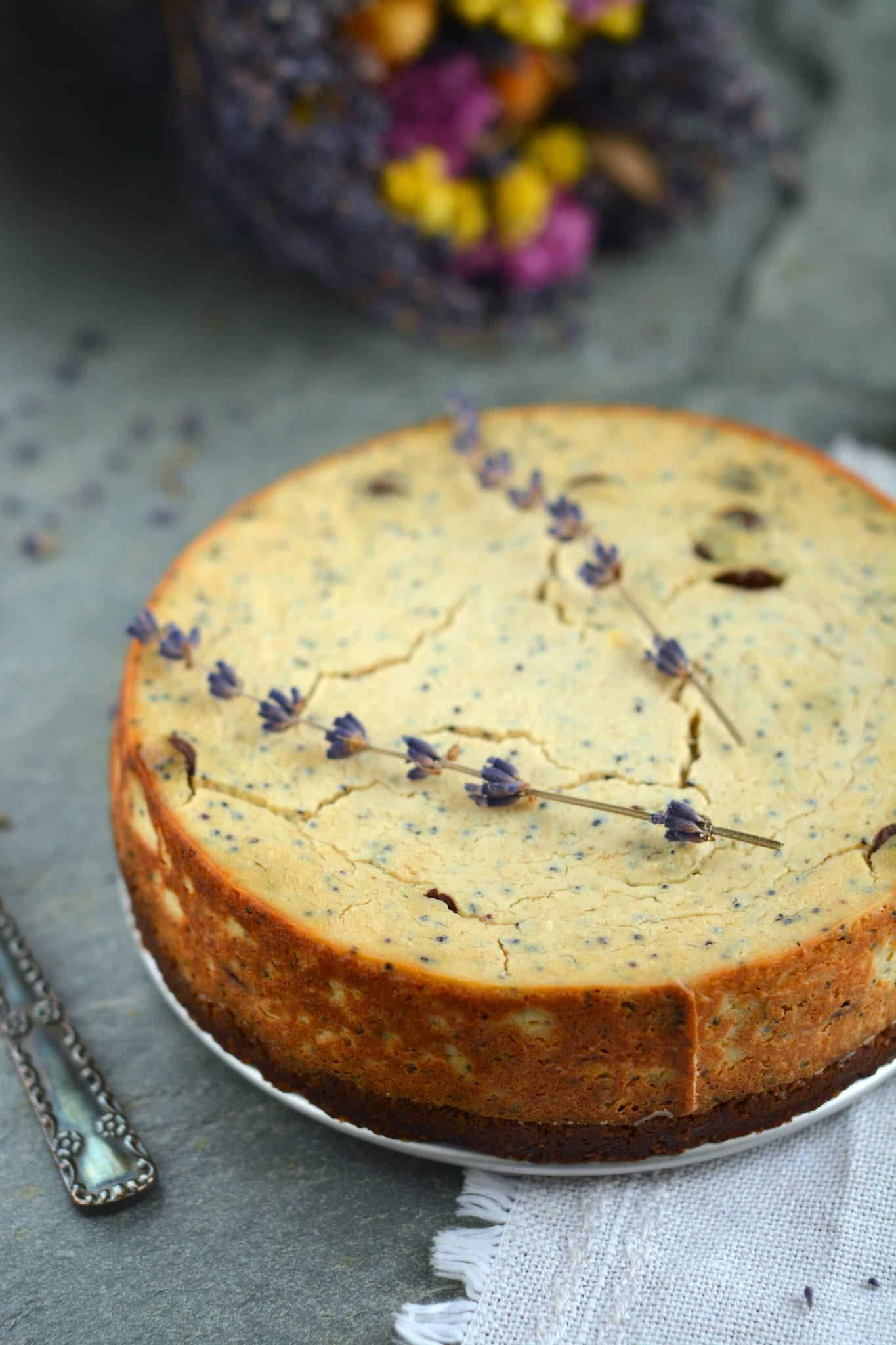 vegan-baked-cheesecake-tofu-chocolate-poppy-seeds