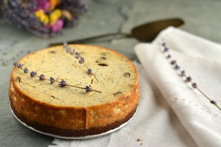 vegan baked cheesecake with tofu and poppy seeds