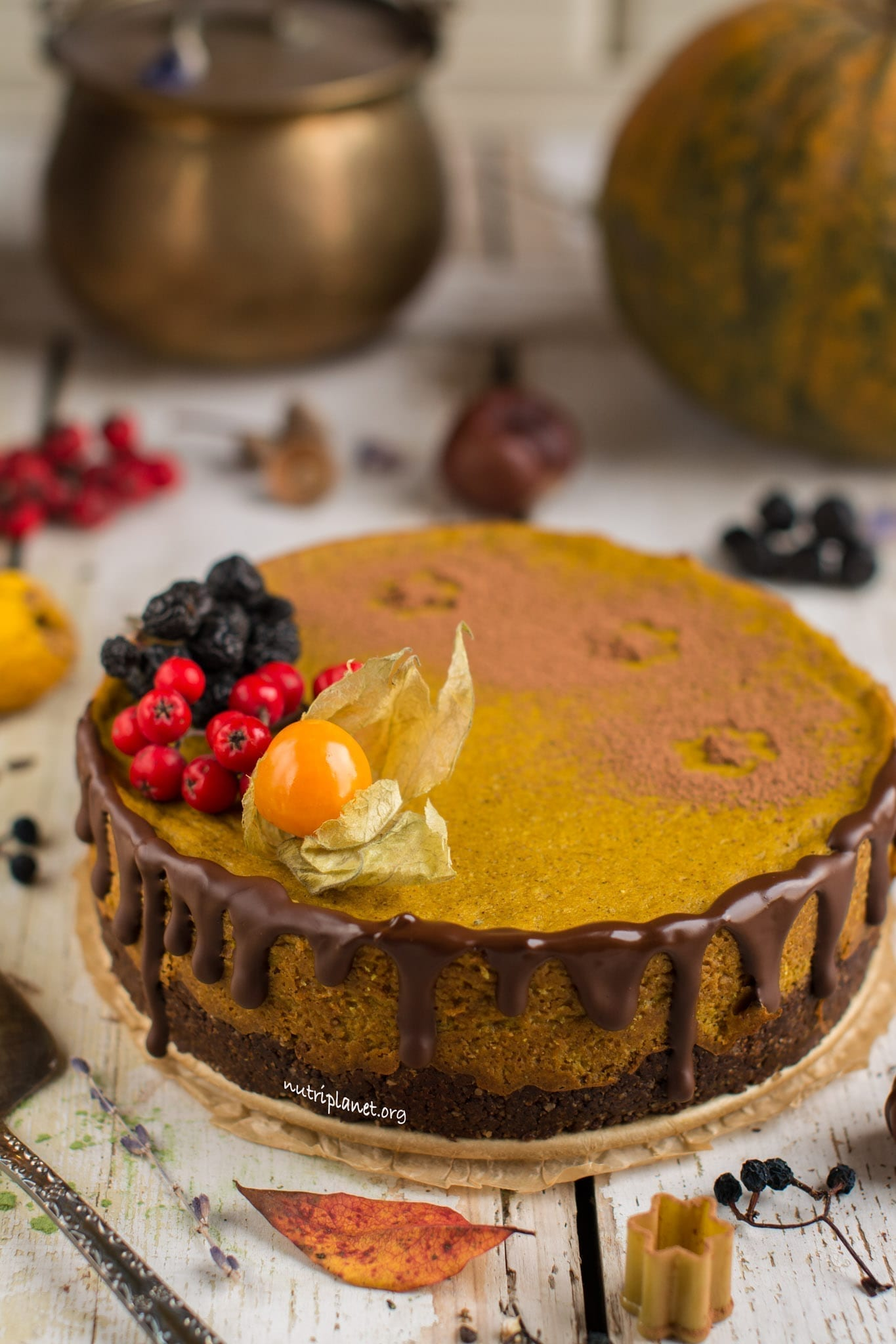 Vegan Pumpkin Cheesecake with Silken Tofu