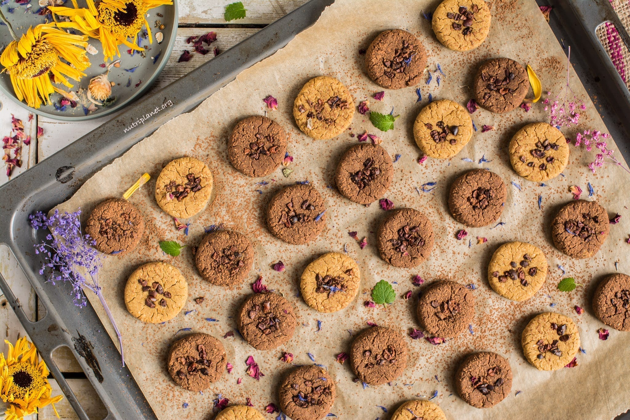 Chickpea Cookies aka Chickpea Cookies Dough Bites