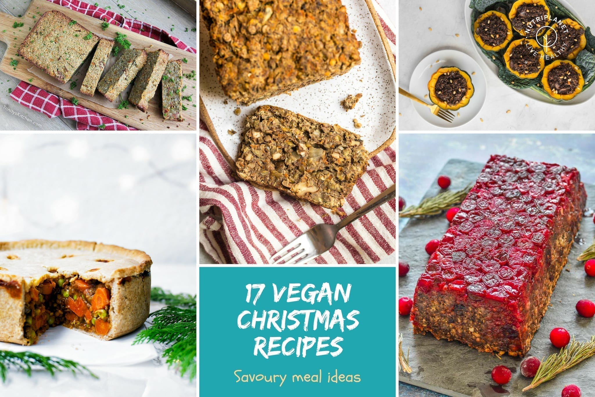 Vegan Christmas Dinner Recipes Gluten Free Nutriplanet