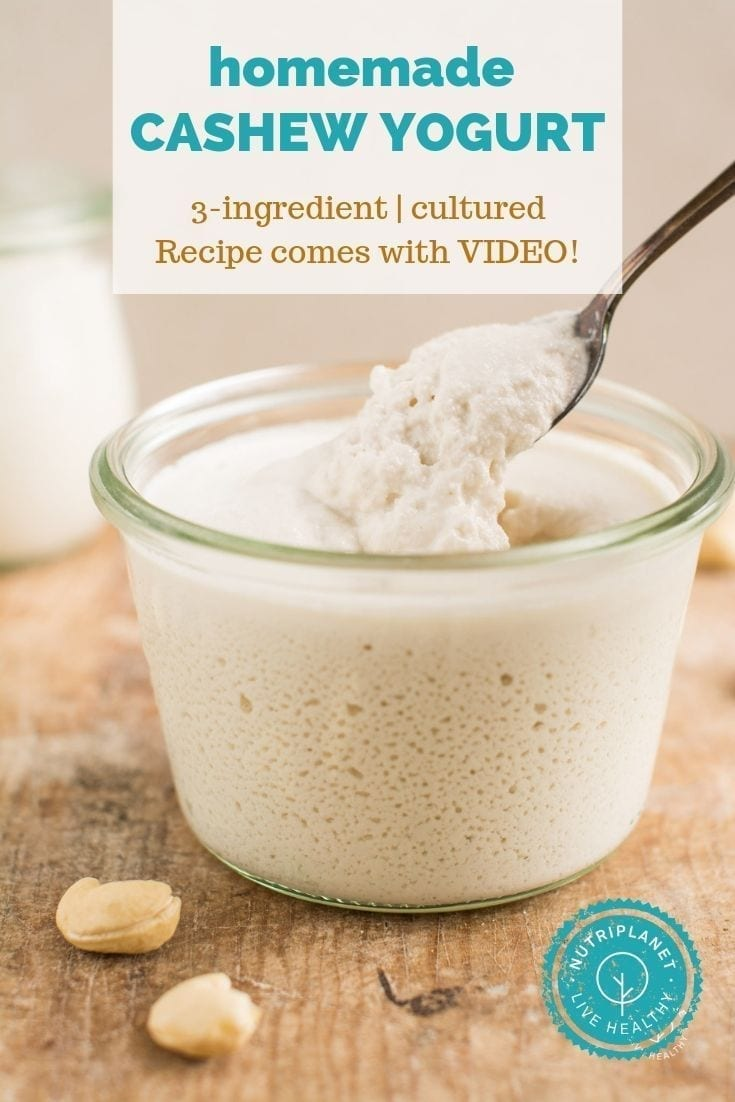 Rich and creamy 3-ingredient homemade cashew yogurt without yogurt maker.